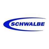 SCHWALBE (50)